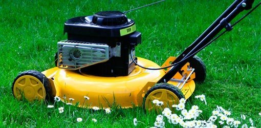 How to Fix a Lawn Mower That Runs Rough | Today's Homeowner