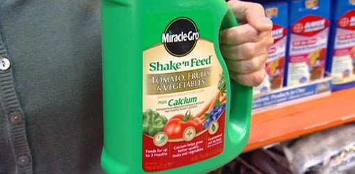 Miracle-Gro Shake 'n Feed Plant Food for Vegetables | Today's Homeowner