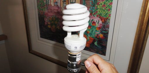 CFL light bulbs in table lamp.