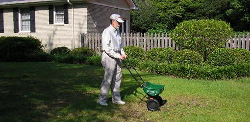Using a fertilizer spreader to apply antifungal treatment to lawn