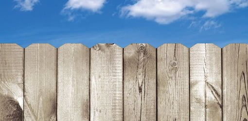 Wood fence in need of staining