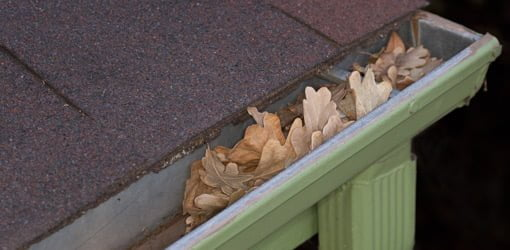 Gutter full of leaves.