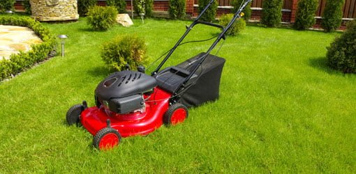 Lawn mower in grass lawn.