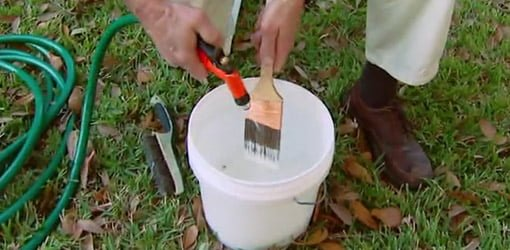 Cleaning a paintbrush with a garden hose.
