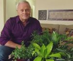 Danny Lipford with houseplants that can improve indoor air quality in your home.