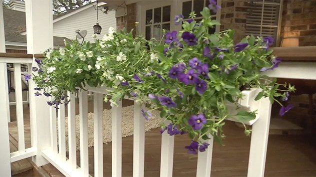 rain gutters as flower boxes