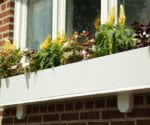 How to Build and Install a Window Box
