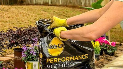 best-new-product-miracle-gro